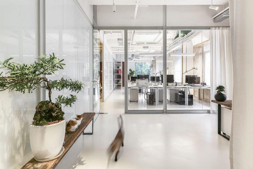 Curada oficina en blanco con grandes patitions de vidrio y cubierta de vegetación