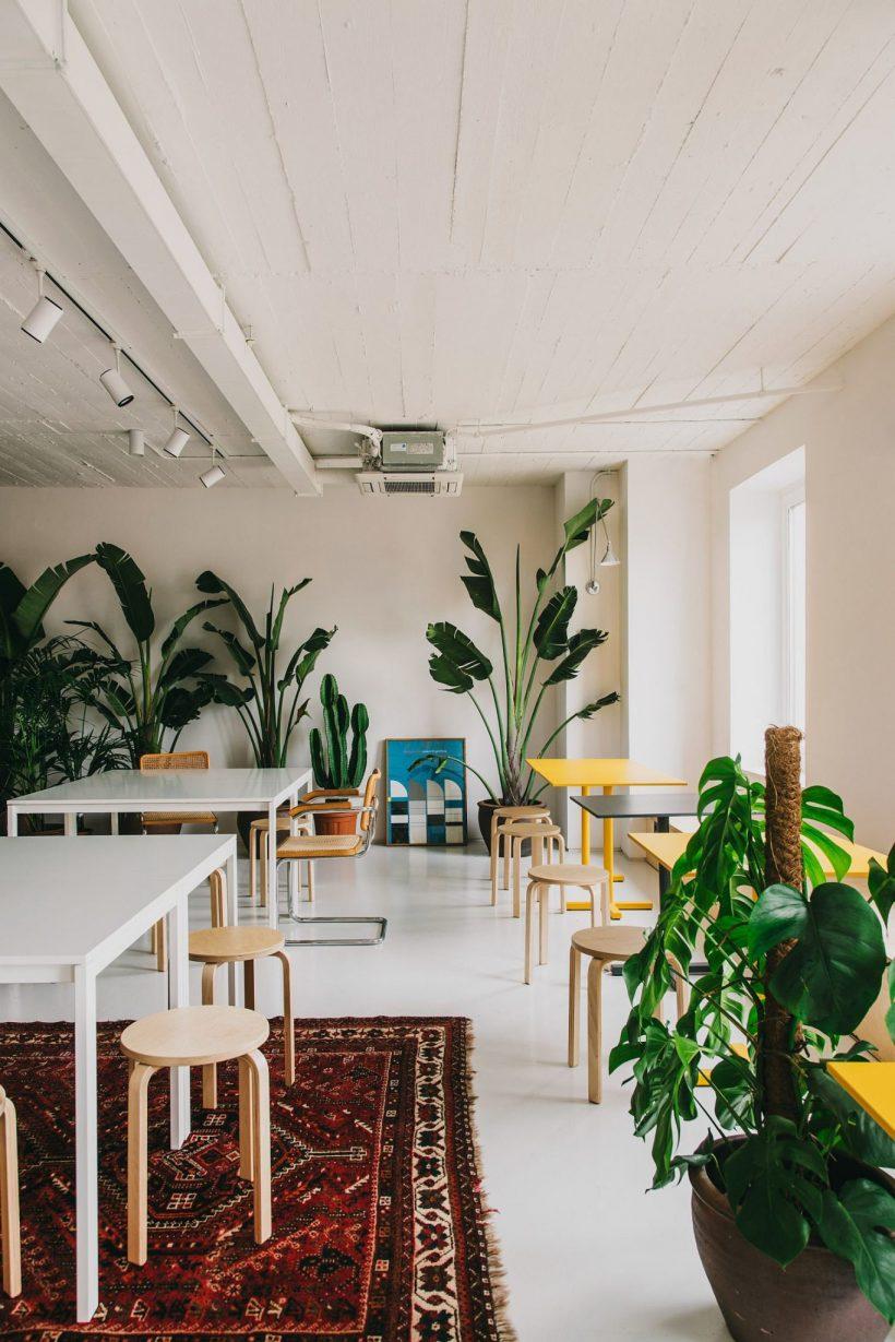 Les plantes d'intérieur apportent verdure au bureau contemporain